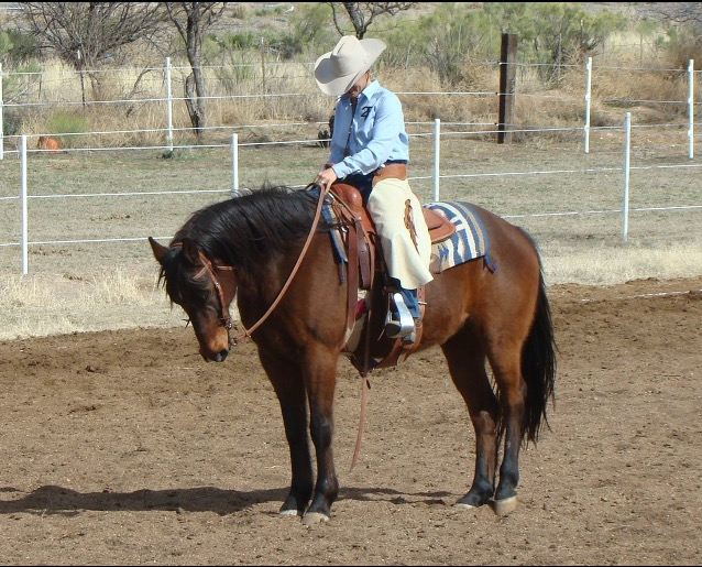 J6 Ranch Equestrian Center, 3036 W Williams Rd, Benson, az, 85602, usa